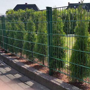 moosgrüner Doppelstabmattenbaum mit kleinen Bäumchen