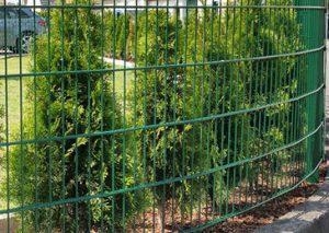 Moosgrüner Doppelstabmattenzaun mit Hecke